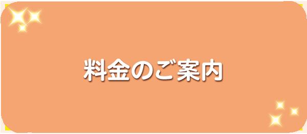 料金のご案内(pc)
