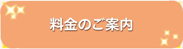 料金のご案内(smp)